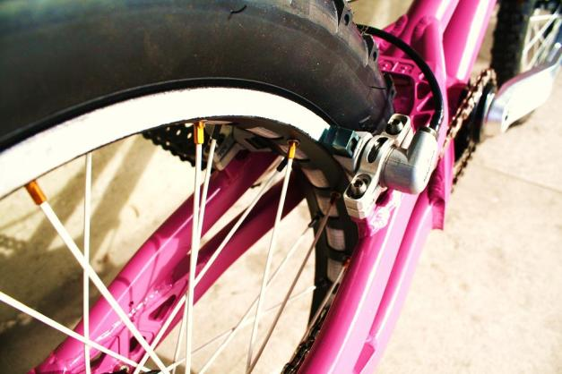 Bike-Check_5